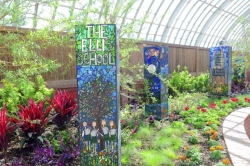 Phipps Summer Flower Show