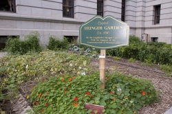 Pa. Capitol garden fights hunger, literally and symbolically