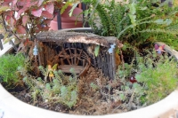Imagination a key element in creating fairy garden