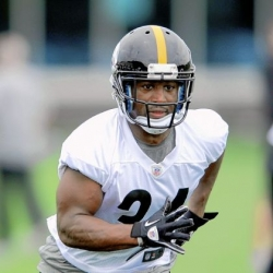 Former Panther Stephens-Howling happy to be a Steeler now