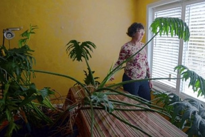Ronna Scoratow of Squirrel Hill is pictured with her 40-year-old tree philodendron.