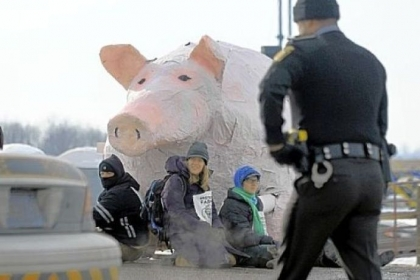Fracking protesters gather Sunday before a giant papier-mache pig along Mount Jackson Road in South Beaver, Lawrence County. The protesters chose the pig because of a drilling site019s proximity to a nearby organic farm, where pigs are raised, and what they termed a 01Cpiggish gas industry.01D