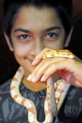Chris Nagle, 13, with a corn snake at the Pittsburgh Reptile Show & Sale at Harmar House in Cheswick.