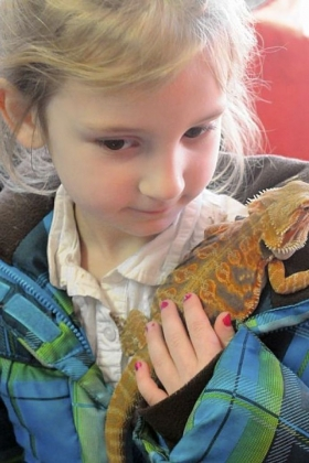 Lilly King, 5, carries her father Dylan?s bearded dragon.