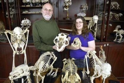 John Wible and Michelle Spaulding participated in creating the Tree of Life, which includes DNA and anatomical descriptions of placental mammals. Scientists hope the Tree of Life helps enter details of fossils or animals they discover and determine where it fits into the Tree of Life, including what family of animals it is associated with and even when it most likely existed.