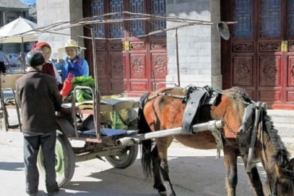 In Xizhou, Yunnan province, farmers go to market in horse-drawn carts. Local officials want to capitalize on the region's natural and cultural beauty to spur more tourism.