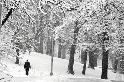 Bud Martin of Greenfield walks through a snow-covered Overlook Drive in Pittsburgh's Schenley Park this morning.