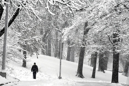 Bud Martin of Greenfield walks through a snow-covered scene Wednesday along Overlook Drive in Schenley Park.