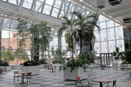 The interior of the PPG Wintergarden, Downtown.
