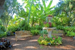 Selby Gardens in Sarasota provides a rich floral retreat and learning center