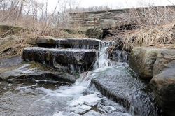 Pittsburgh Parks Conservancy takes aim at Panther Hollow restoration